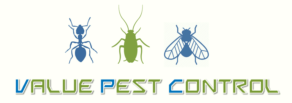 Value Pest Control